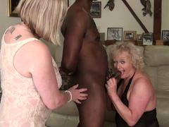 CouplesExposed - Nigel, Claire & Speedy Bee Pt1 HD Video