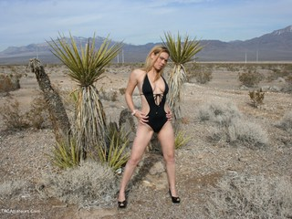 Sin City Sex - Desert Nudes Picture Gallery