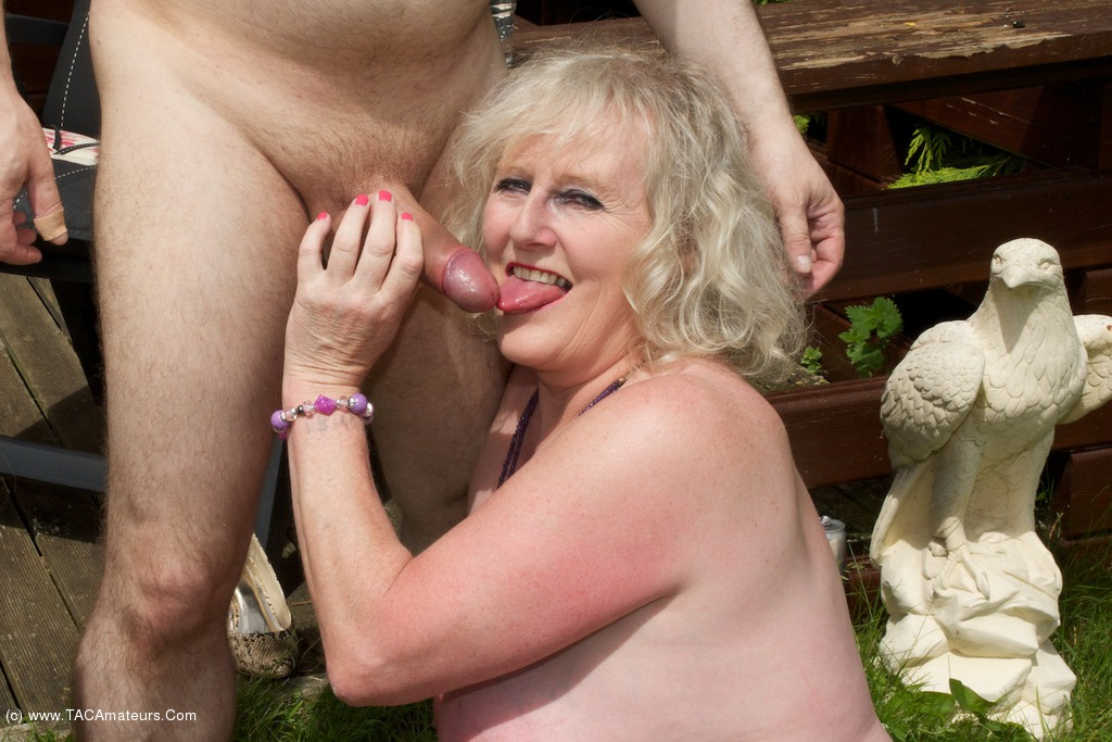 Porn Star Sex Orgies