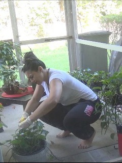 Popular Request What does Ching Lan do on her daily basis Watch her garden in her natural habitat. Unscripted but so sex