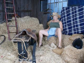 Savana - The Barn Picture Gallery