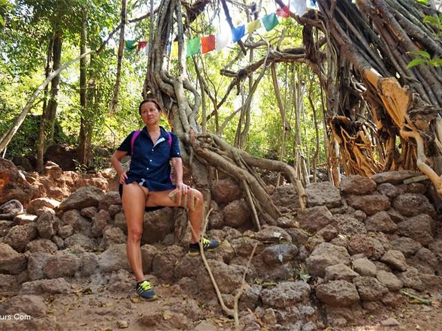 DianaAnanta - Jungle